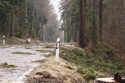 Des arbres arrachés mais une situation «sous contrôle»