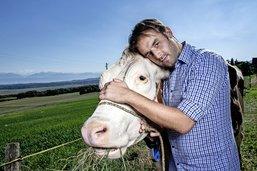 Romang, la vie, l'amour, les vaches