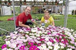 Gros soulagement pour les jardineries