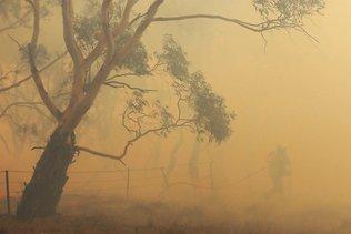 Incendies en Australie: le gouvernement lance une commission d'enquête nationale
