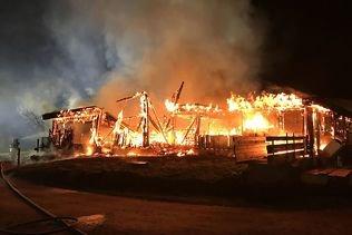 Environ 160 porcs périssent dans les flammes à Herdern (TG)