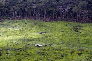 La Colombie a perdu près de 159'000 ha de forêts en 2019