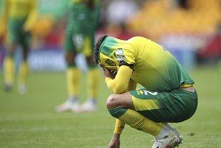 Norwich relégué après une saison dans l'élite