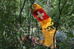 Un avion rate son atterrissage et s'écrase en lisière de forêt