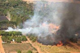 Record d'incendies en juillet au Pantanal brésilien