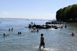 Baignade à nouveau autorisée dans le lac de Neuchâtel