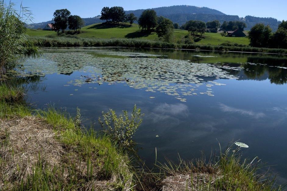 Le lac de Lussy