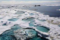 Bank of America renonce à financer les forages en Arctique