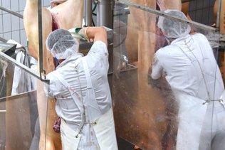 L'Allemagne va interdire la sous-traitance dans ses abattoirs