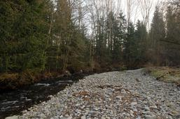 Pollution de la Glâne: quatre condamnations