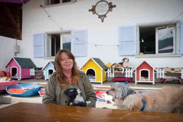Marina Tami dans son oasis: la cohabitation est joyeuse, entre tous ses pensionnaires, et aucun vétéran n'aurait l'idée de regarder les autres en chien de faïence.