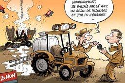 Char 2x NON en feu: après les ravageurs, les paysans luttent contre la bêtise