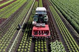 Sus aux pesticides!
