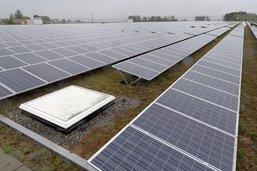 Fribourg, une terre propice au solaire
