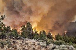 Des centaines de milliers d'hectares en feu dans l'Ouest américain