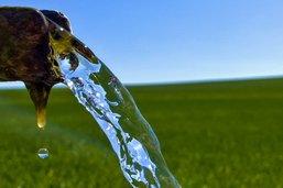Contenir la menace liée aux pesticides