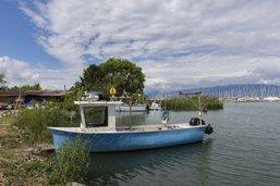 Réaménagement et modernisation du port de Delley-Portalban