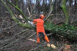 L'association ForêtFribourg anticipe les dommages naturels