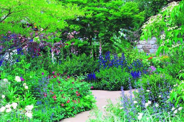 Server error for Creation jardin anglais