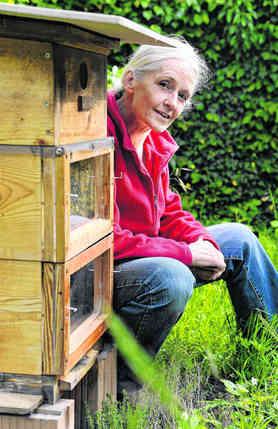 une apicultrice hors normes la maison verte maison verte. Black Bedroom Furniture Sets. Home Design Ideas